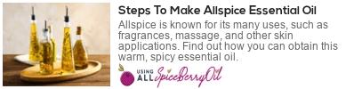benefits of allspice oil