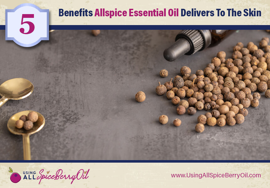 allspice oil nutrients