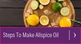 uses for allspice